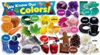 We Know Our Colors Mini Bulletin Board Set (49 cards)